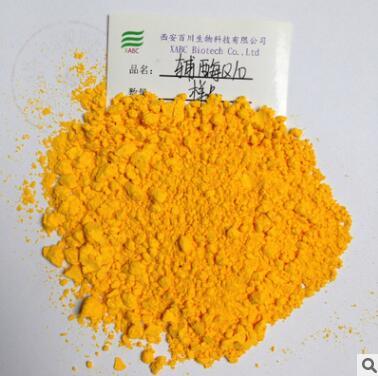 辅酶Q10 脂溶性 水溶性 油溶性辅酶q10