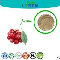 纯天然提取 针叶樱桃提取粉末 VC17% 25%