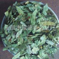优质天然大片 番泻叶 减脂叶