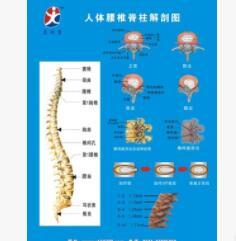 颈椎牵引器 要间康