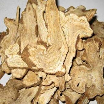供应 中药材白竹 厂家种植批发