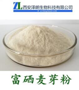 麦芽提取物 富硒麦芽粉