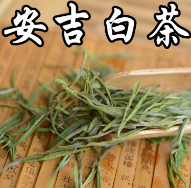 2017新茶春茶上市 安吉白茶 明前一级白茶 现货供应 白茶批发