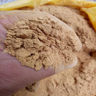 中药材批发散装超细虎杖粉包化验量大从优可按要求目数