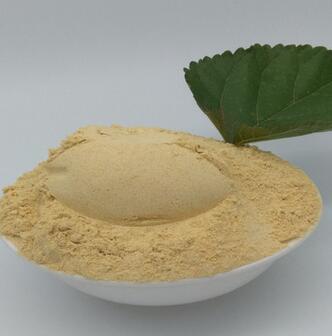 批发优质中药材散装超细芦巴籽 葫芦巴籽 商家主营葫芦巴子粉