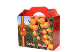 厂家定做彩色手提礼盒 水果精品包装礼盒 橘子橙子通用包装纸盒