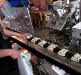 广东月饼装盒机器,全自动装盒机,药板装盒机