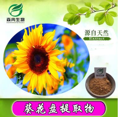 葵花盘/向日葵花盘提取物10:1/向日葵花提取物/葵花籽提取物