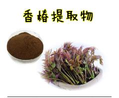 香椿叶提取物 10:1 香椿芽 香椿 香桩头提取物