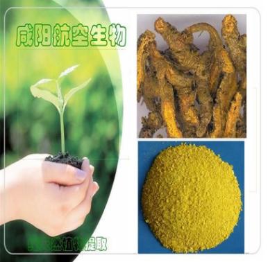 黄连提取物 黄柏提取物 盐酸小檗碱 ≥97% 98% 黄连素