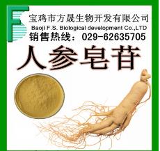 人参皂甙 UV80% 人参皂苷 人参提取物 厂家供应