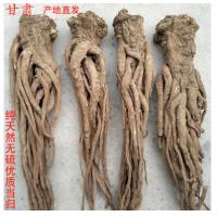 甘肃岷县当归 优质中药材 正品野生 无硫特级 中药材