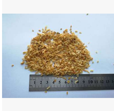供应 批发 缅甸小虾米 海虾米