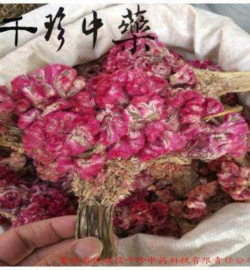 千珍中药材专业批发,提供购销手续 鸡冠花