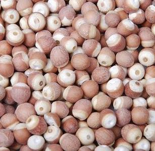 肇庆新鲜干货红皮芡实仁特级农家自产芡实米鸡头米可磨粉500g